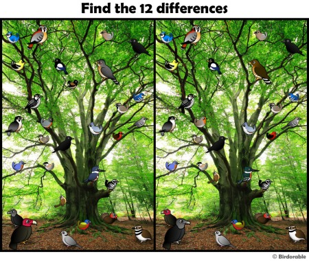 find_differences_1