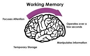 working-memory