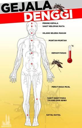 gejala denggi