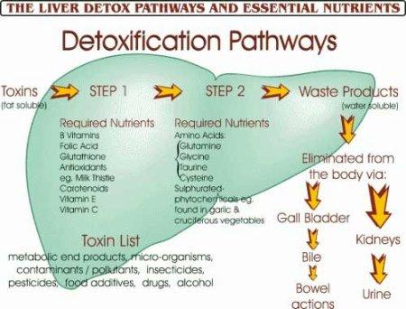 liver-detox-lg